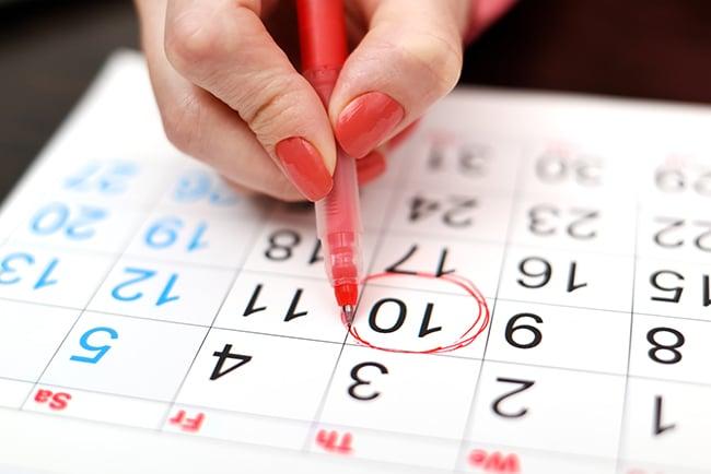 calendar marronnier